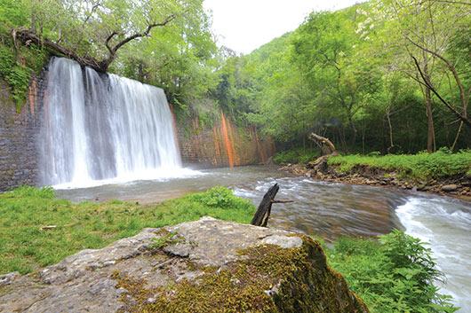 Педесет зелени нијанси во клисурата на Кочанска Река