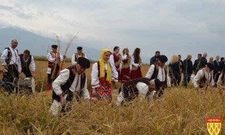 """Манифестацијата """"Денови на кочанскиот ориз"""" – спој на традицијата и современиот уметнички израз"""