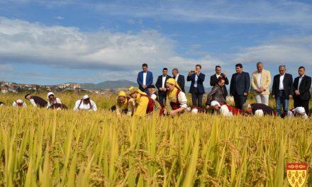 Министерот Николовски најави мерки за поддршка на кочанскиот ориз