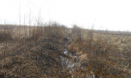 Министерството за земјоделство одобри средства за подобрување на руралната инфраструктура во селото Тркање
