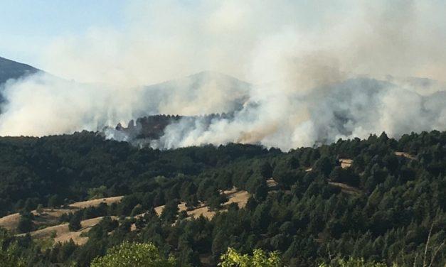 Локализиран пожарот на Осоговските Планини