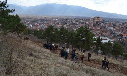 Акција за пошумување на неколку локации во Кочани