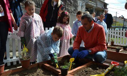 """Детската градинка """"Павлина Велјанова"""" организира акција за пошумување"""