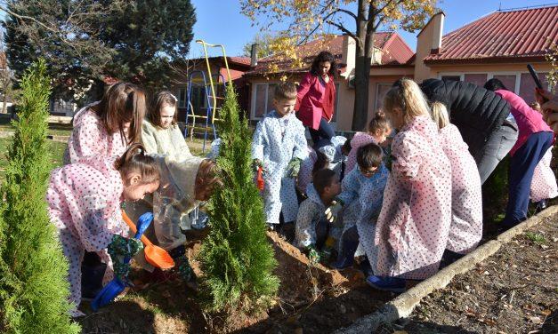 """Децата засадија дрвца во дворот на кочанската градинка """"Павлина Велјанова"""""""