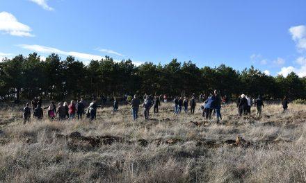 Општина Кочани обезбеди илјада садници за граѓанска акција за пошумување на Осоговските Планини