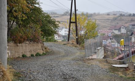 Јавни набавки за асфалтирање на осум улици во Кочани
