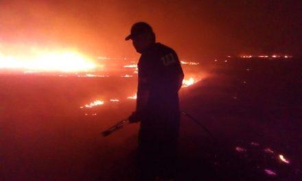 Дванаесет часа непрекината борба со пожарите – Кочанско Поле во пламен