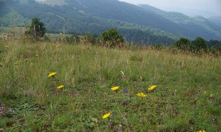 """Јавната расправа за прогласување на дел од Осоговските Планини за заштитено подрачје ќе се одржи во салата на Спомен-домот """"АСНОМ"""""""