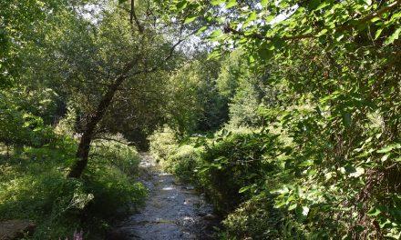 Нови содржини за одмор и рекреација со проектот за регулација на Кочанска Река
