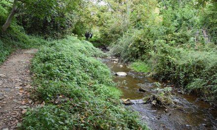 Почнува подготовката на теренот за регулација на коритото на Кочанска Река