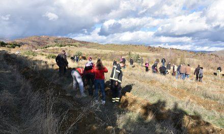 Општина Кочани организира акција за пошумување во месноста Пресечена Скала