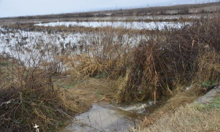 Првпат од Буџетот на Општина Кочани се издвоени средства за чистење на одводните канали во полските села во Кочанско