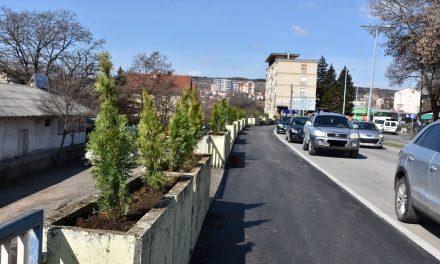 """Акција за озеленување на дел од улицата """"Тодосија Паунов"""""""